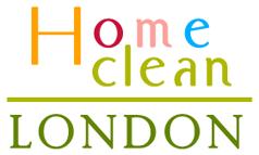 Fast Home Clean logo